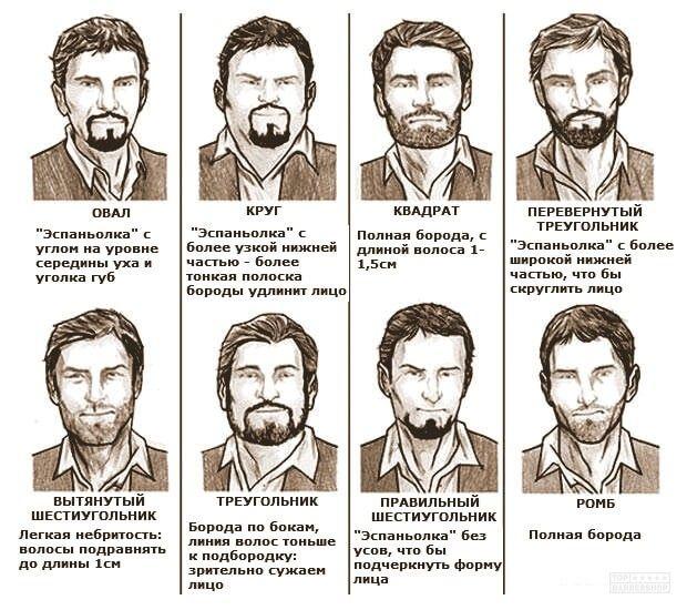 Как подстричь бороду Как сделать стильную бородку фото